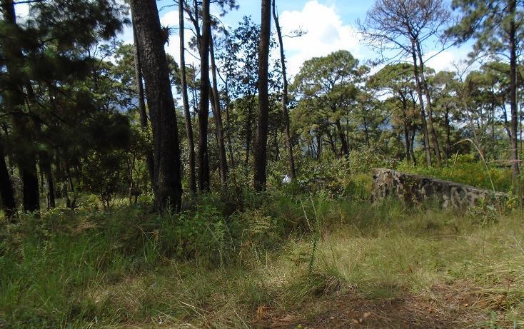 Foto de terreno habitacional en venta en  , valle de bravo, valle de bravo, méxico, 1698024 No. 06