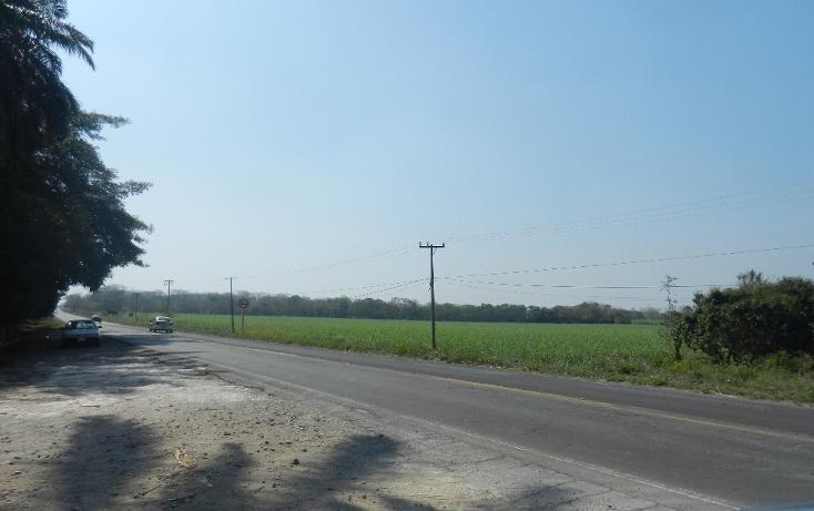 Foto de terreno comercial en venta en  , puente de jula, paso de ovejas, veracruz de ignacio de la llave, 1725170 No. 01