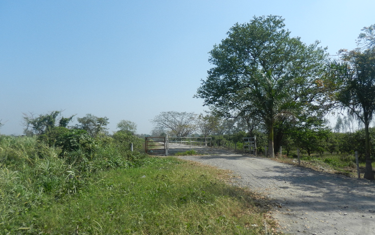 Foto de terreno comercial en venta en  , puente de jula, paso de ovejas, veracruz de ignacio de la llave, 1725170 No. 02