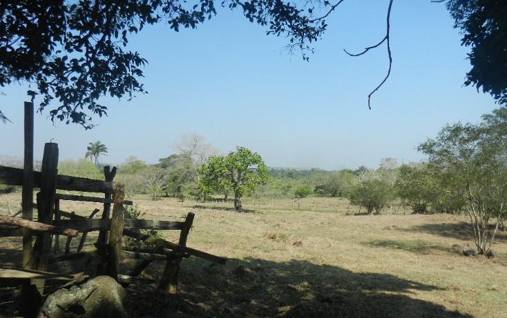 Foto de terreno comercial en venta en  , puente de jula, paso de ovejas, veracruz de ignacio de la llave, 1725170 No. 07