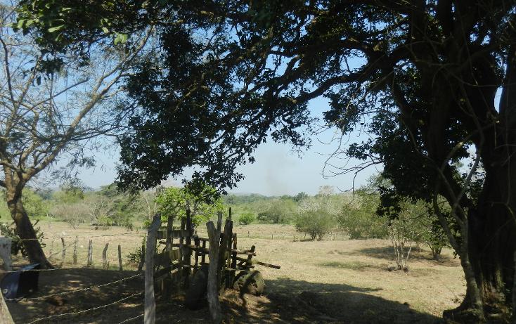 Foto de terreno comercial en venta en  , puente de jula, paso de ovejas, veracruz de ignacio de la llave, 1725170 No. 08
