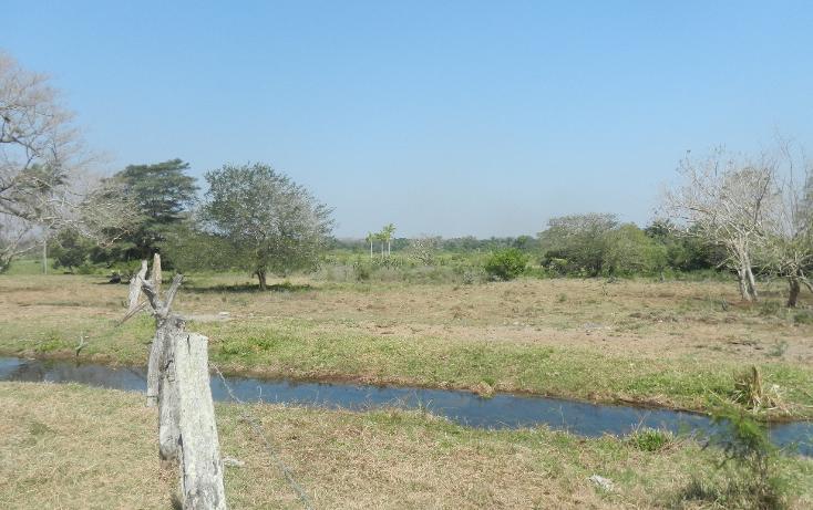 Foto de terreno comercial en venta en  , puente de jula, paso de ovejas, veracruz de ignacio de la llave, 1725170 No. 10