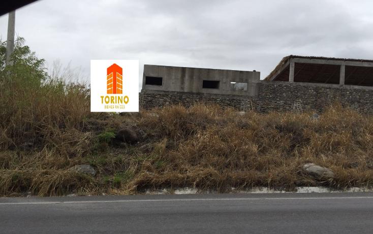 Foto de terreno habitacional en venta en  , puente nacional, puente nacional, veracruz de ignacio de la llave, 1943866 No. 01