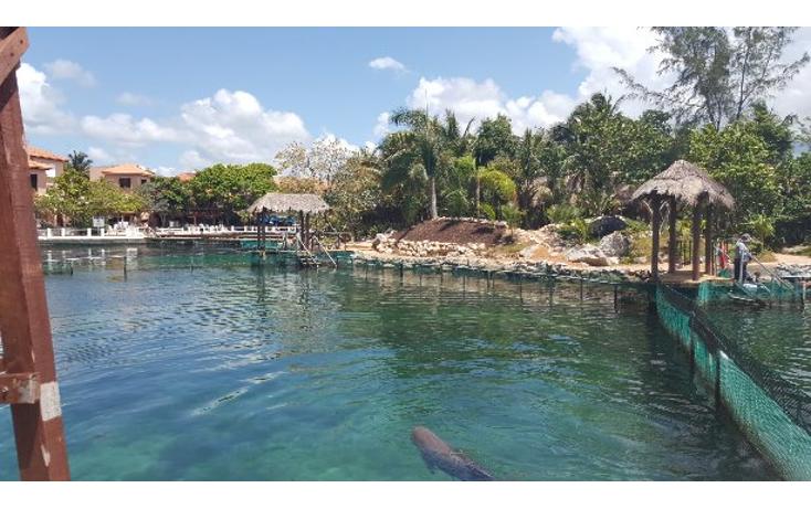 Foto de casa en venta en  , puerto aventuras, solidaridad, quintana roo, 1111603 No. 30