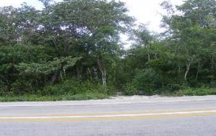 Foto de terreno comercial en venta en  , puerto aventuras, solidaridad, quintana roo, 1272227 No. 05