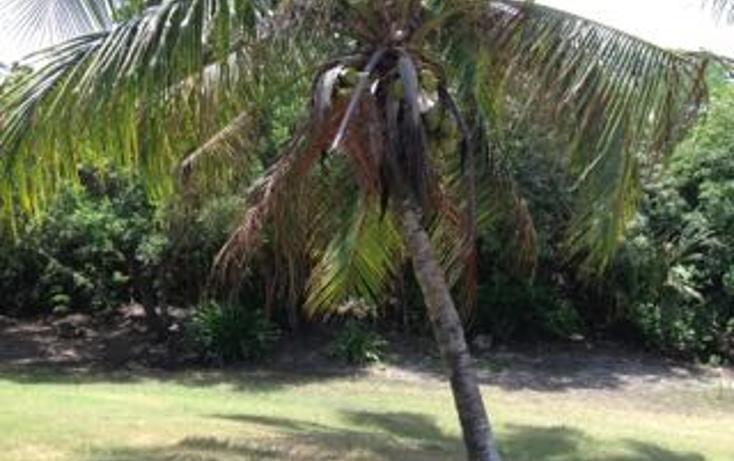 Foto de terreno habitacional en venta en  , puerto aventuras, solidaridad, quintana roo, 1394019 No. 05