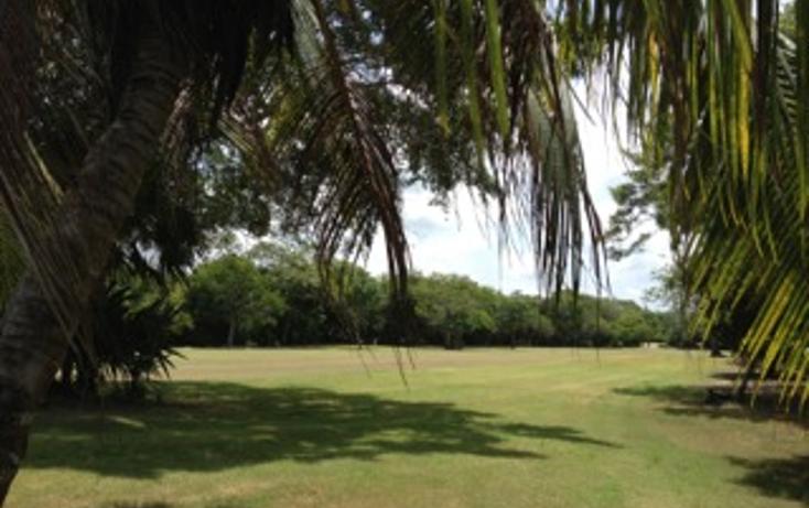 Foto de terreno habitacional en venta en  , puerto aventuras, solidaridad, quintana roo, 1482783 No. 06