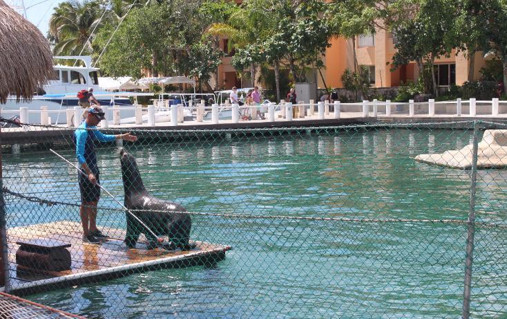 Foto de departamento en renta en  , puerto aventuras, solidaridad, quintana roo, 948439 No. 02