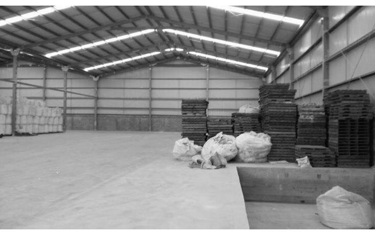 Foto de nave industrial en renta en  , puerto escondido, altamira, tamaulipas, 1550656 No. 07