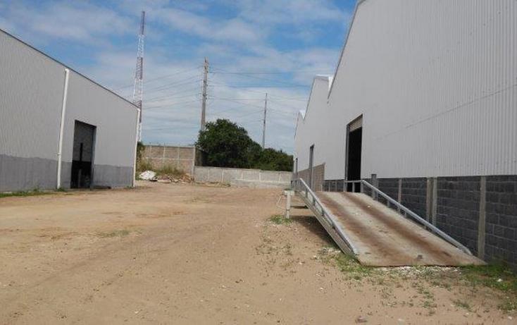 Foto de bodega en renta en, puerto escondido, altamira, tamaulipas, 1550656 no 13