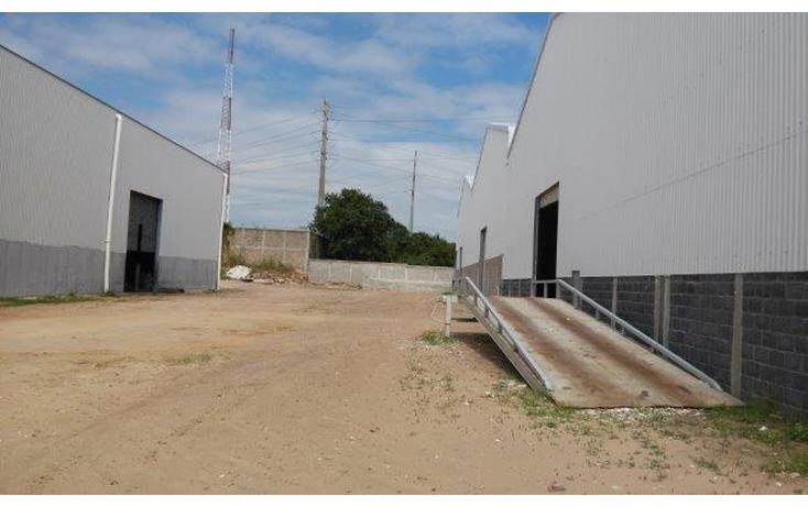 Foto de nave industrial en renta en  , puerto escondido, altamira, tamaulipas, 1550656 No. 13