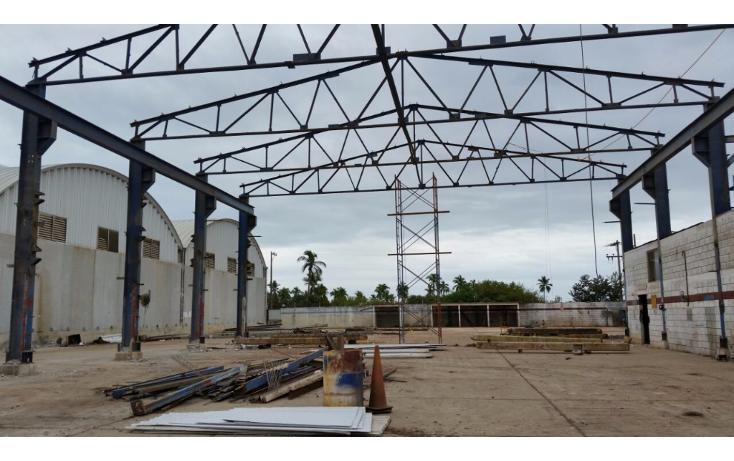Foto de terreno comercial en renta en  , puerto industrial de altamira, altamira, tamaulipas, 1186085 No. 01