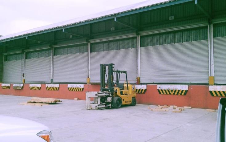 Foto de nave industrial en renta en  , puerto industrial de altamira, altamira, tamaulipas, 1197071 No. 01