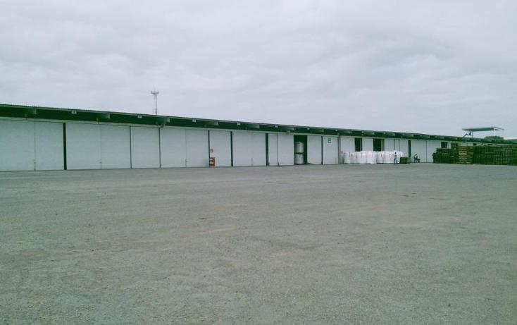Foto de nave industrial en renta en  , puerto industrial de altamira, altamira, tamaulipas, 1197071 No. 04