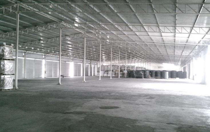 Foto de nave industrial en renta en  , puerto industrial de altamira, altamira, tamaulipas, 1197071 No. 05