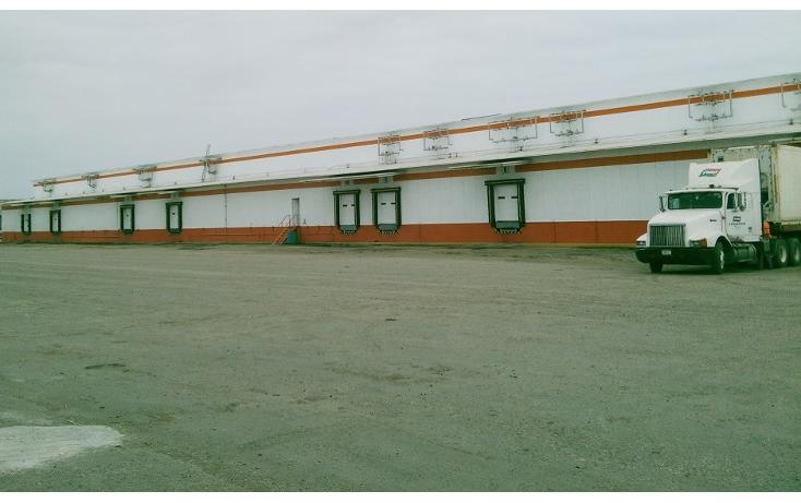 Foto de nave industrial en renta en  , puerto industrial de altamira, altamira, tamaulipas, 1197071 No. 06