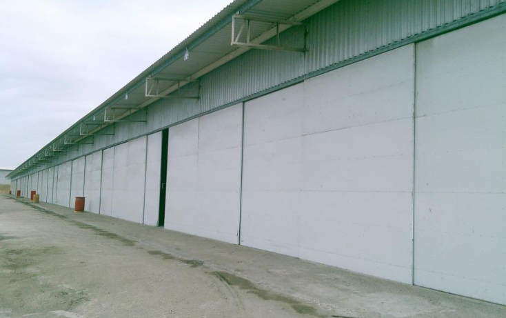Foto de bodega en renta en  , puerto industrial de altamira, altamira, tamaulipas, 1280251 No. 03
