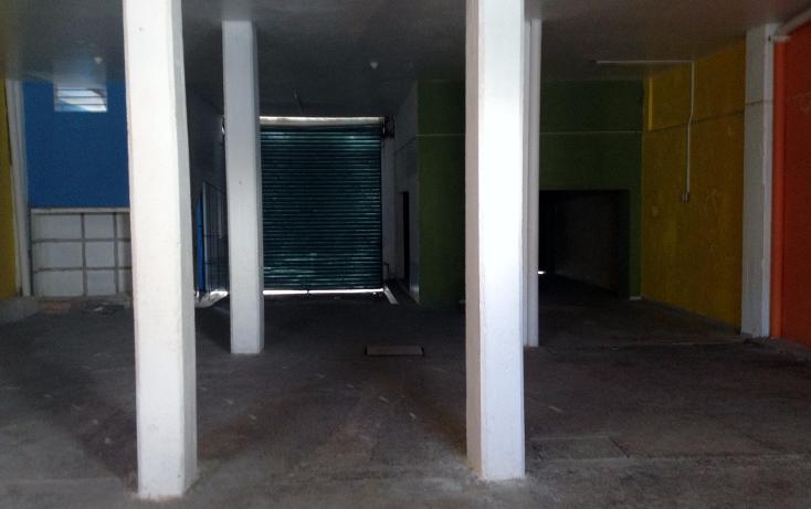 Foto de local en renta en  , puerto méxico, coatzacoalcos, veracruz de ignacio de la llave, 1299813 No. 05