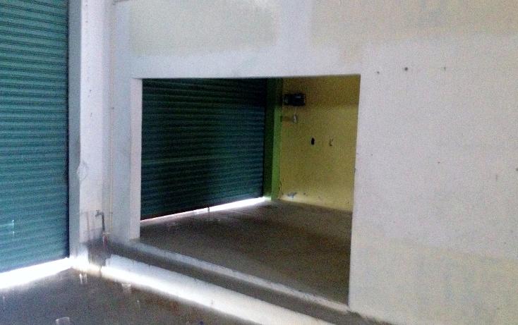 Foto de local en renta en  , puerto méxico, coatzacoalcos, veracruz de ignacio de la llave, 1299813 No. 07