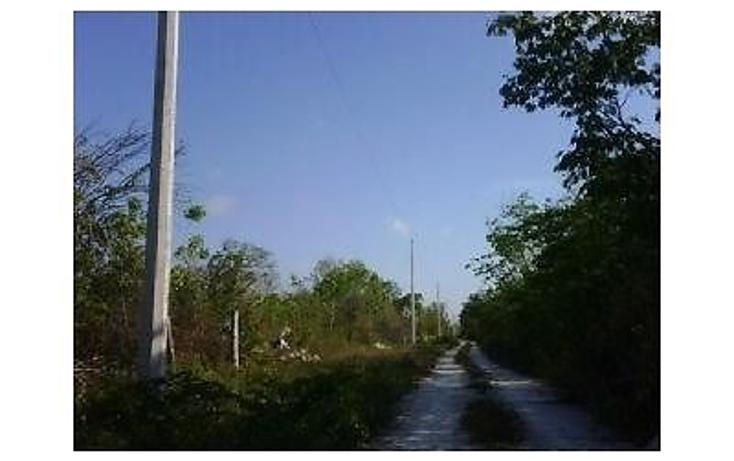 Foto de terreno habitacional en venta en  , puerto morelos, benito juárez, quintana roo, 1040979 No. 03