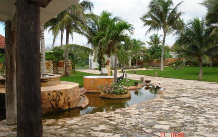 Foto de casa en venta en  , puerto morelos, benito juárez, quintana roo, 1046457 No. 05