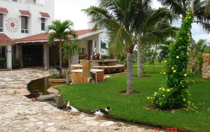 Foto de casa en venta en  , puerto morelos, benito juárez, quintana roo, 1046457 No. 09