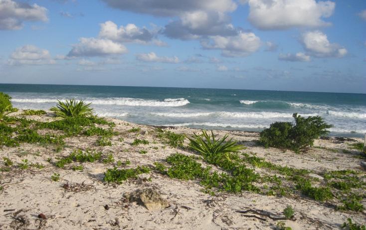 Foto de terreno habitacional en venta en  , puerto morelos, benito juárez, quintana roo, 1048917 No. 02