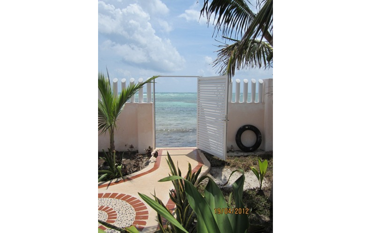 Foto de casa en venta en  , puerto morelos, benito ju?rez, quintana roo, 1055785 No. 03