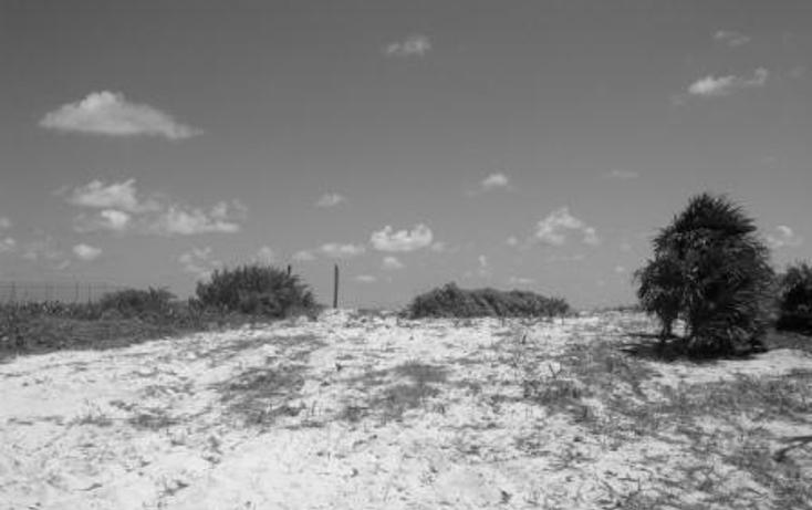 Foto de terreno comercial en venta en  , puerto morelos, benito juárez, quintana roo, 1062565 No. 01