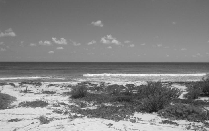 Foto de terreno comercial en venta en  , puerto morelos, benito juárez, quintana roo, 1062565 No. 03