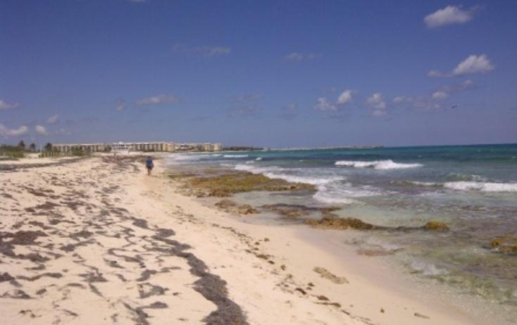 Foto de terreno comercial en venta en  , puerto morelos, benito juárez, quintana roo, 1062565 No. 04