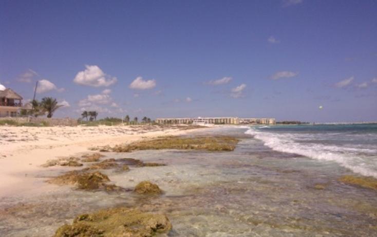 Foto de terreno comercial en venta en  , puerto morelos, benito juárez, quintana roo, 1062565 No. 06