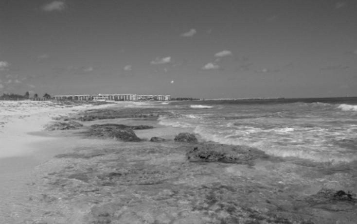 Foto de terreno comercial en venta en  , puerto morelos, benito juárez, quintana roo, 1062565 No. 10