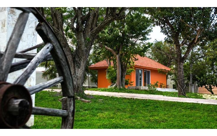 Foto de terreno habitacional en venta en  , puerto morelos, benito juárez, quintana roo, 1064501 No. 04