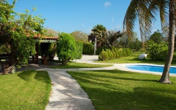 Foto de terreno habitacional en venta en  , puerto morelos, benito juárez, quintana roo, 1064501 No. 06