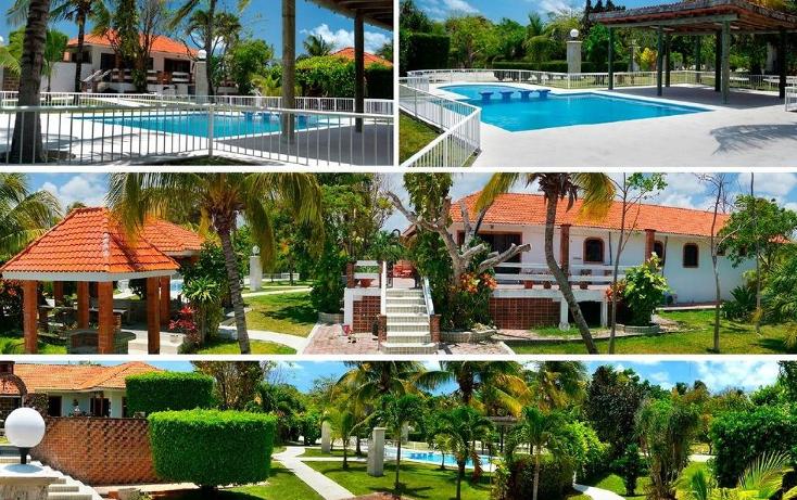 Foto de terreno habitacional en venta en  , puerto morelos, benito juárez, quintana roo, 1064501 No. 07