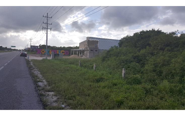 Foto de terreno comercial en venta en  , puerto morelos, benito juárez, quintana roo, 1071697 No. 03