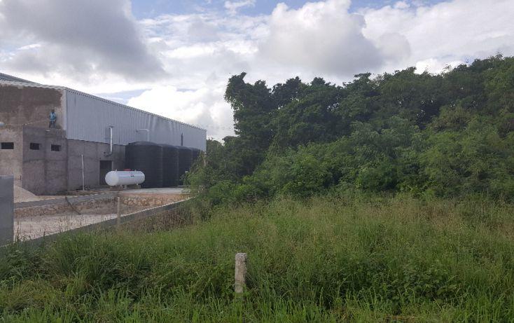Foto de terreno comercial en venta en, puerto morelos, benito juárez, quintana roo, 1071697 no 04