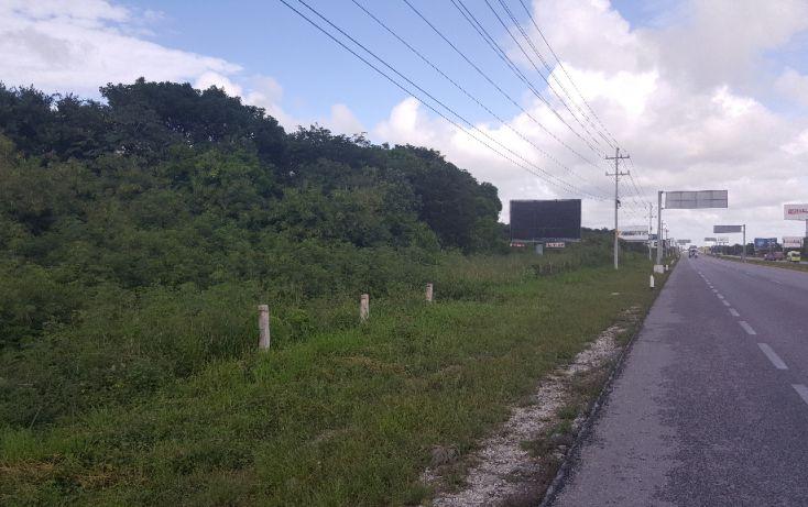 Foto de terreno comercial en venta en, puerto morelos, benito juárez, quintana roo, 1071697 no 05