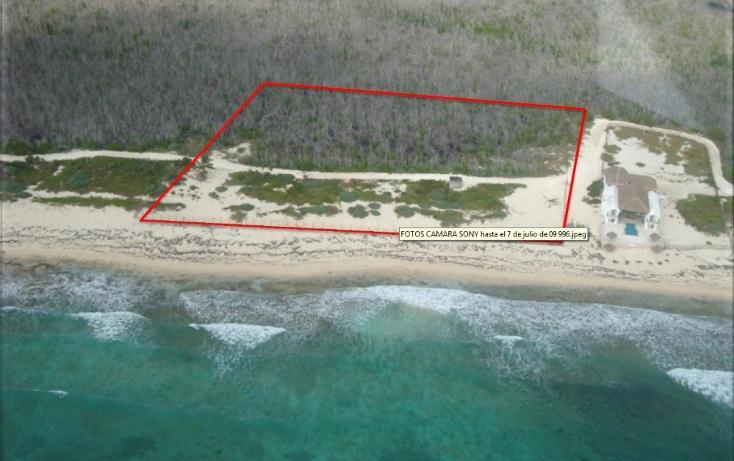 Foto de terreno comercial en venta en  , puerto morelos, benito juárez, quintana roo, 1075905 No. 01