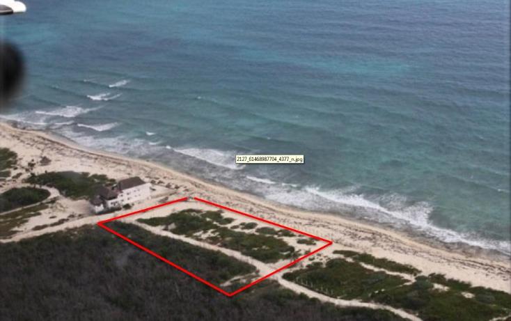 Foto de terreno comercial en venta en  , puerto morelos, benito juárez, quintana roo, 1075905 No. 02