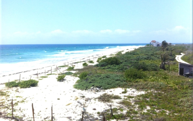 Foto de terreno comercial en venta en  , puerto morelos, benito juárez, quintana roo, 1075905 No. 04