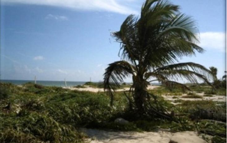 Foto de terreno comercial en venta en  , puerto morelos, benito juárez, quintana roo, 1075905 No. 05