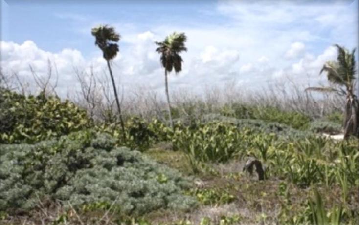 Foto de terreno comercial en venta en  , puerto morelos, benito juárez, quintana roo, 1075905 No. 06