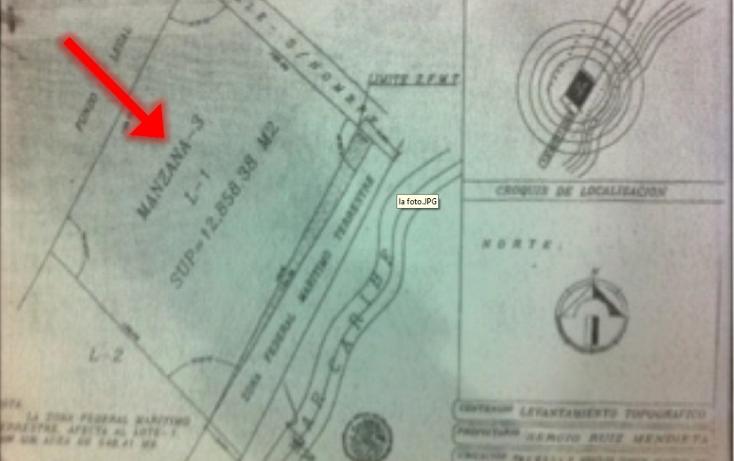 Foto de terreno comercial en venta en  , puerto morelos, benito juárez, quintana roo, 1075905 No. 10