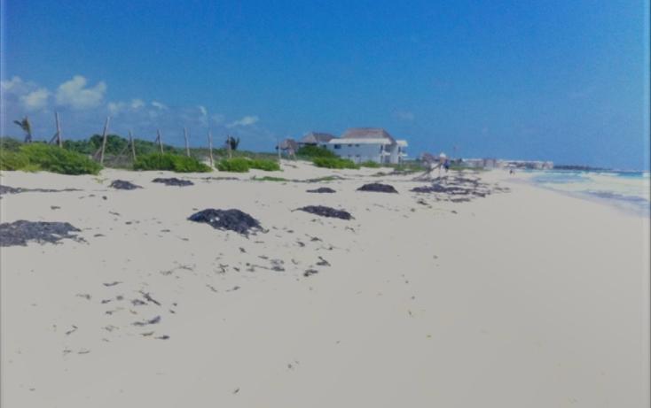 Foto de terreno comercial en venta en  , puerto morelos, benito juárez, quintana roo, 1075905 No. 11