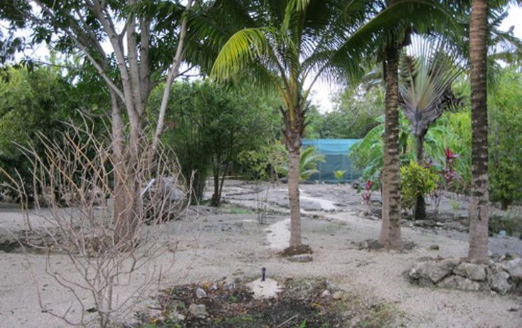 Foto de terreno habitacional en venta en  , puerto morelos, benito juárez, quintana roo, 1078363 No. 03