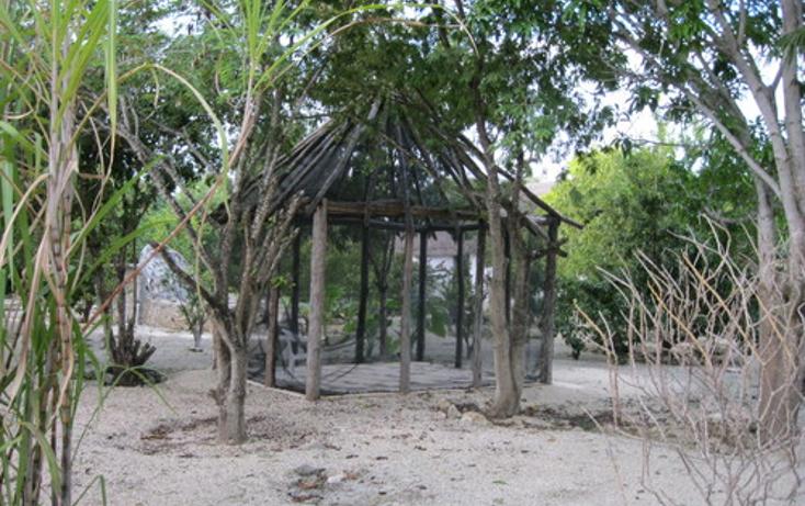 Foto de terreno habitacional en venta en  , puerto morelos, benito juárez, quintana roo, 1078363 No. 05