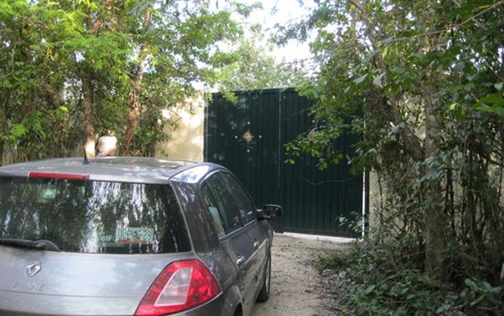 Foto de terreno habitacional en venta en  , puerto morelos, benito juárez, quintana roo, 1078363 No. 06