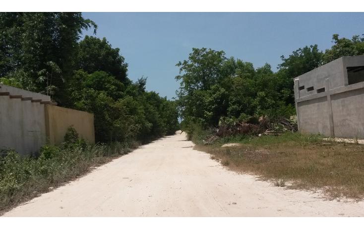 Foto de terreno habitacional en venta en  , puerto morelos, benito juárez, quintana roo, 1090915 No. 04